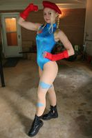 Cammy 3 by sleeperkid
