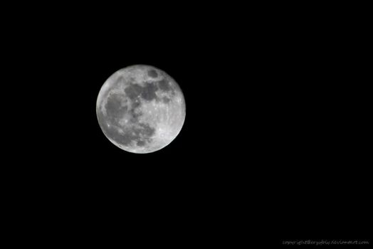 Full Moon by erysfoly