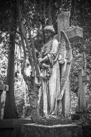 Highgate Cemetary II by attomanen