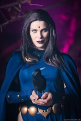 Raven by gillykins