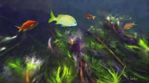 Fish Haven by TomCarlos