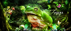 Frog by gabber1991md