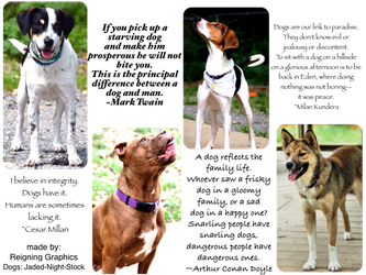 Dog Banner by Reigning-Graphics