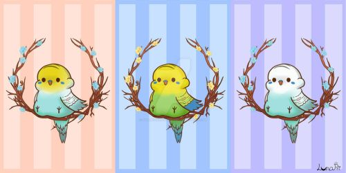 Pudgy Budgies by fullmoonnightonigiri