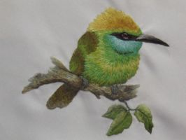 Embroidered Bee Eater by Ladyanna-b