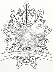 Page 19 of Australian Birds Adult Coloring Book by LorraineKelly