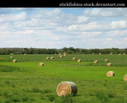 Hay Bales 1 by Stickfishies-Stock