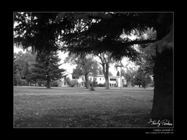 Campus Grounds II by Caligari-87