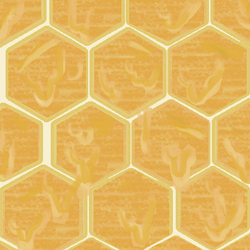 Honey combs by Liljatupsu