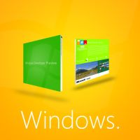 Windows Developers Preview DVD by MetroUI
