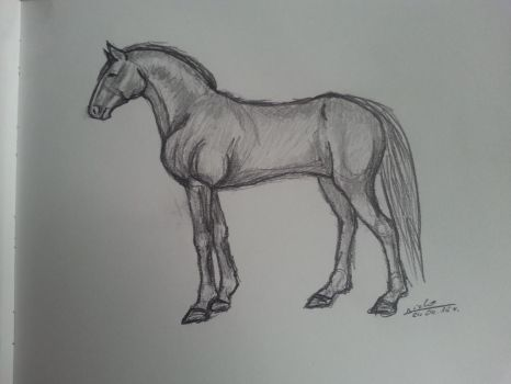 Sketch#1 Horse by Aiclo