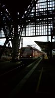 Frankfurt (Main) Hbf (2) by engineerJR