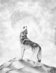 Wolf and Moon by siffert