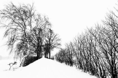 lost in coldness by augenweide