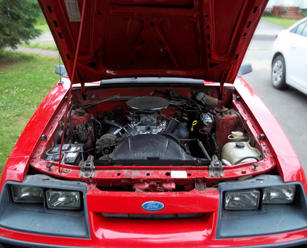 1986 Mustang Convertible - XXXVII by Walking-Tall