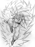 Double Ascended Saiyan! by Windi101