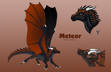 Meteor Reference 2018 2 by AprilSilverWolf