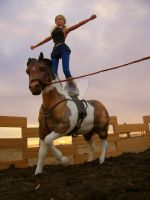 Horseback Acrobats. by CatWink