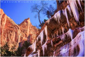 IceFalls in Zion by tourofnature