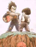 Vegeta and Gohan - Planet Namek by SunnyDjoka
