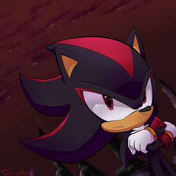 Shadow :gift: by Tri-shield