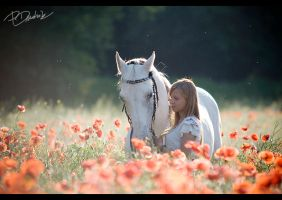 Sylwia and Bojar 2 by paula2206-photo