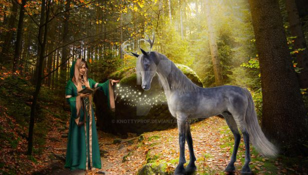 Druid-Composite-1 by knottyprof