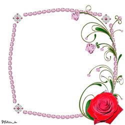 frame from pink gems with rose and swirl png by Melissa-tm