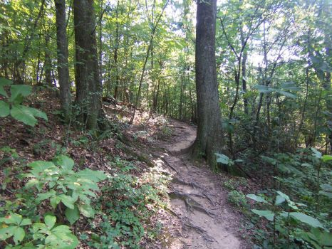 Hiking 005 - August 2011 by hXcpunk23