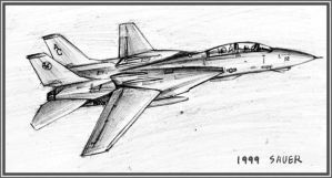 F-14 Tomcat by wave-lens