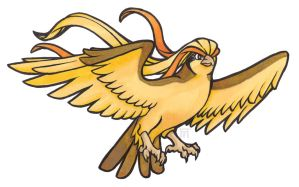 Shiny Pidgeot by Skudde