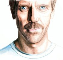 Hugh Laurie 2 by urfavoriteartist