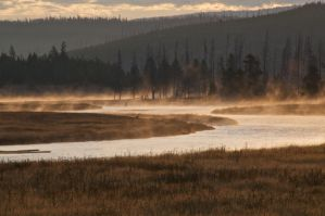 Fly Fishing At Dawn by thankyoujames