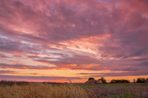 sunset over fields by edinaB