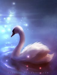 swan by Apofiss