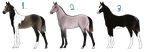 Smokey Foal Adopts by NorthernMyth