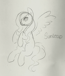 Sunleap by MoonGazerThePony