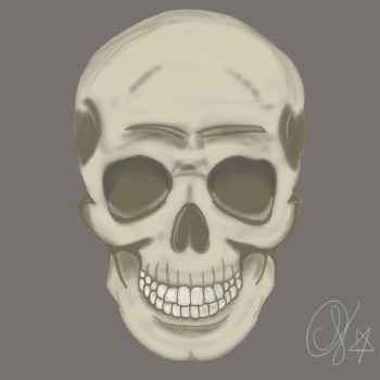 Just a skull :] by MINGO36