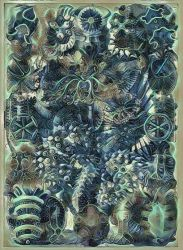 Haeckel Variation 19 by james119