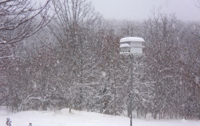 Birdhouse in Snow by effing-stock