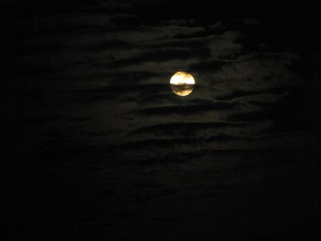 new moon by osc50