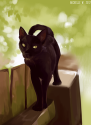 Black Cat by aSoulsApogee