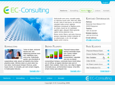EC Consulting by iodic