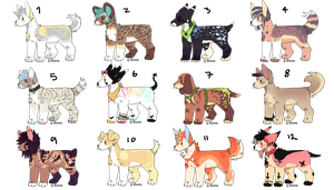 Canine adopts ::OPEN:: by VANNNS