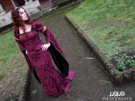 Medieval Burgundy Stock III by DanielleFiore