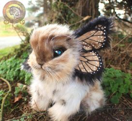Sold, Poseable Baby Bunnyfly! by Wood-Splitter-Lee
