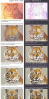 Eyes of the tiger - Painter 11 tutorial by Bisanti