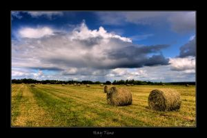 Hay Time by plbeaulieu