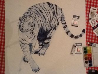 White tiger 4 by megumi16