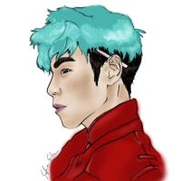 TOP-WIP by Sanavy